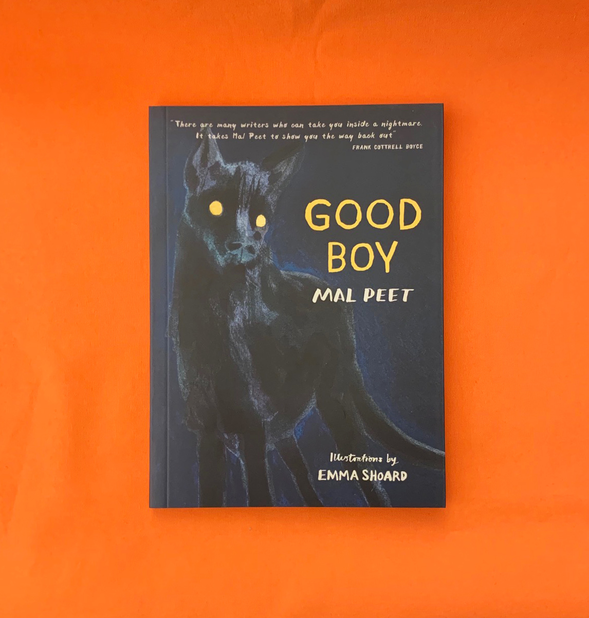 A photograph of the book GOOD BOY by Mal Peet