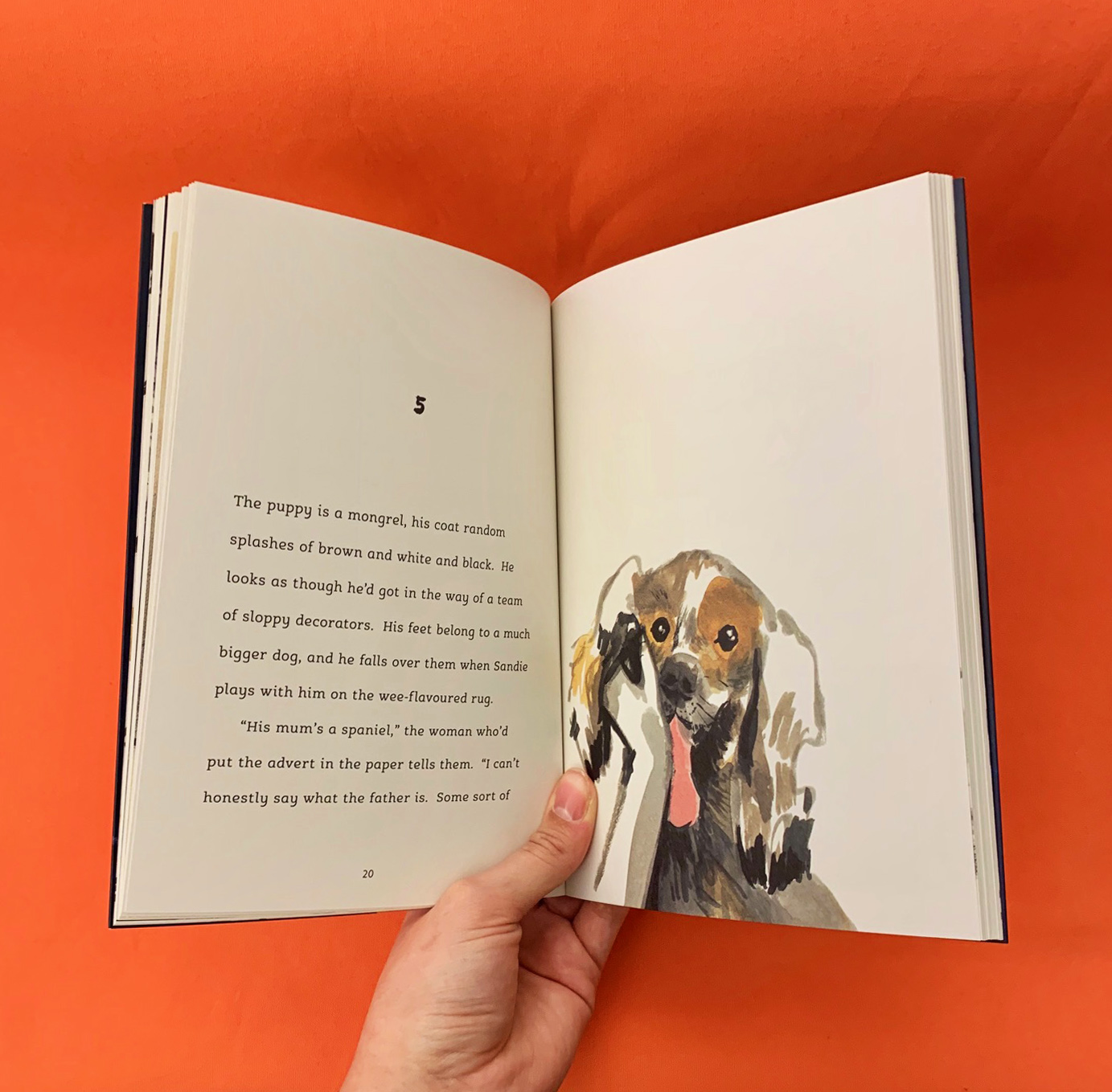a photograph of a the inside pages of GOOD BOY by Mal Peet