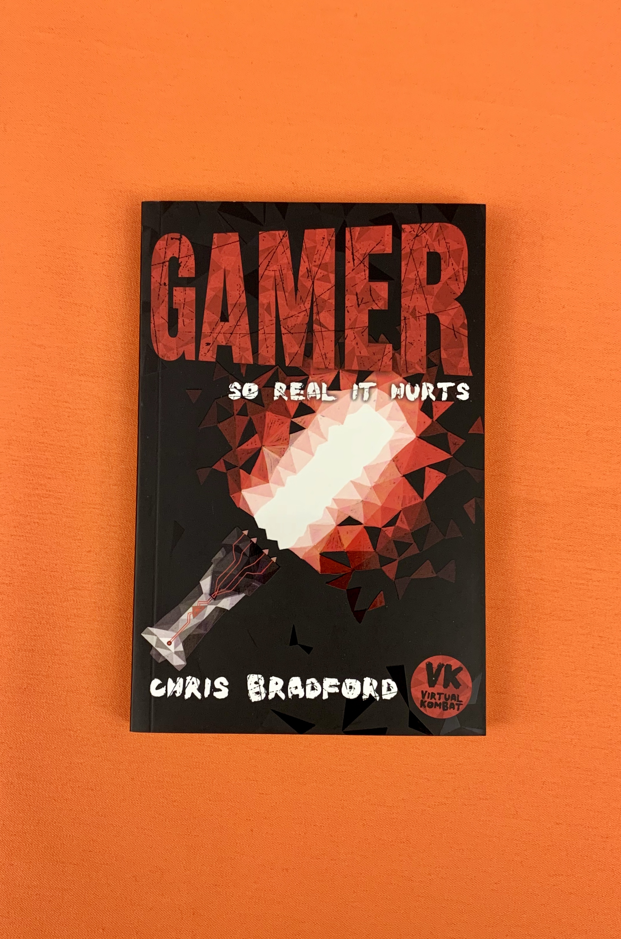 Photograph of the Gamer