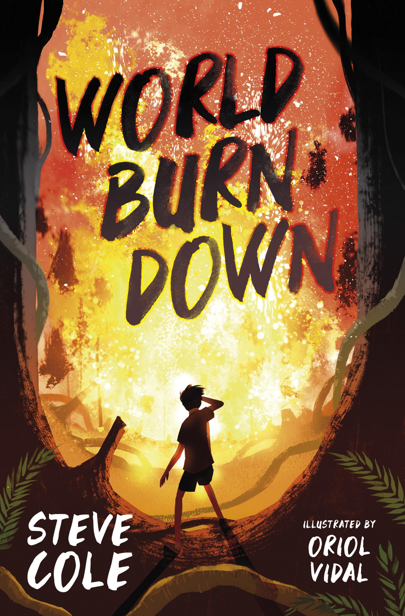 World Burn Down by Steve Cole - Barrington Stoke